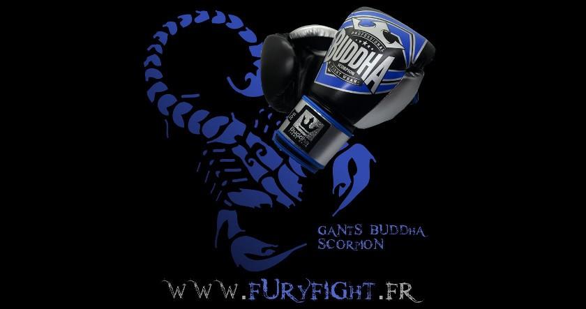Gants Buddha Scorpion Noirs/Bleus